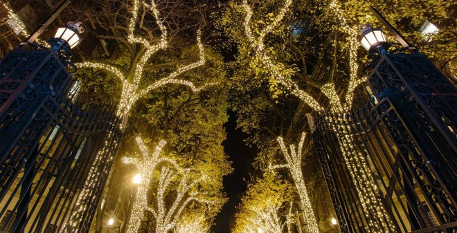 Holiday Lights Illuminate College Walk